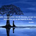 bouddha-matin-inspiration