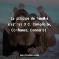principe-lamitie-cest-complicite-confiance-conneries